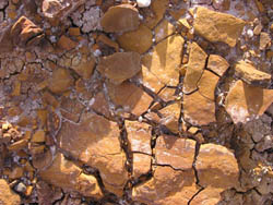 Badlands National Park, Orange Cracked Soil